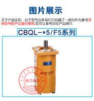 长源型齿轮泵CBQL-F550/F520-CFH/CBQL-E563/F532-CFH/CBQL-532/532-CFH CBQL-F550/F520-CFH/CBQL-E563/F532-CFH/CBQL-532/532