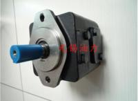 丹尼逊DENISON叶片泵T6E系列叶片泵T6E-066-1R01-C1   高效率  低转速 寿命长 T6E-066-1R01-C1