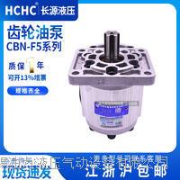 齿轮油泵  CBN-F63-BFHL