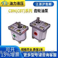 齿轮油泵  CBN-F304