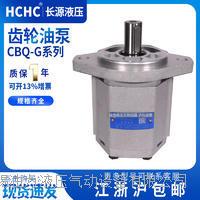 齿轮油泵  CBQ-G540-AFP