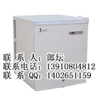 保存造影剂用的恒温箱 FYL-YS-48L