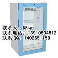 FYL-YS-100L立式冷藏柜