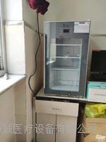 300升医用冷藏柜(2-8℃保存疫苗)  冷冻冷藏疫苗冷藏柜