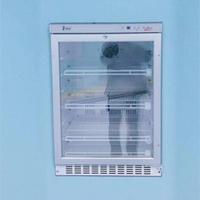 百级手术室保暖柜 FYL-YS-50LK/100L/66L/88L/280L/310L/430L/151L/281L
