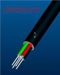 船用电缆 CEFR CEF80