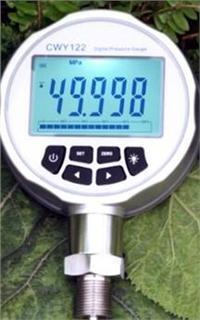 智能數字壓力校驗儀 SWY300