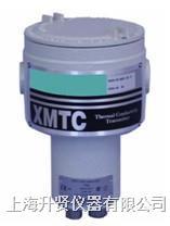 氫純度分析儀 XMTC