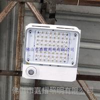 飛利浦IP65防爆油站燈 BCP500