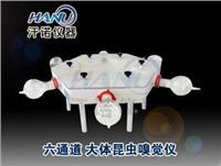 上海大體昆蟲嗅覺儀  HN6-30-300