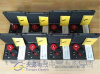 成版人奶茶视频APP電阻測試儀防雷檢測設備 CA6416