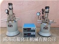 實驗室反應釜 GSH系列實驗室反應釜