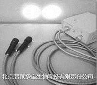 冷光源(双头) DB035
