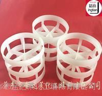 塑料鲍尔环填料 聚丙烯鲍尔环 增强聚丙烯鲍尔环 PVC CPVC鲍尔环填料 PVDF鲍尔环填料