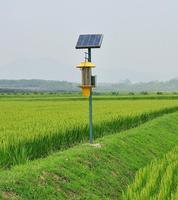 風吸式太陽能殺蟲燈