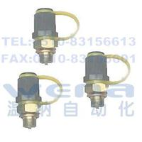 PTS-22,PTS-25,PTS-28,PTS-18,PTS-20,微型高壓測壓接頭,溫納微型高壓測壓接頭,微型高壓測壓接頭生產廠家 PTS-22,PTS-25,PTS-28,PTS-18,PTS-20