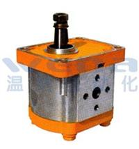 CB1-D314-CLZL,CB1-D314-CLZR,CB1-D314-CTZL,CB1-D314-CTZR,齒輪油泵,無錫溫納廠家 CB1-D314-CLZL,CB1-D314-CLZR,CB1-D314-CTZL,CB1-D314