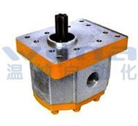 CBQK-F520CLH,齒輪油泵,無錫溫納廠家 CBQK-F520CLH
