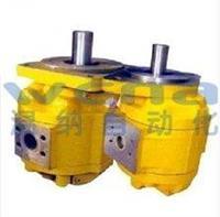 CBGYA3063,CBGYA3080,CBGYA3100,側進后出單泵,無錫溫納WENA廠 CBGYA3063,CBGYA3080,CBGYA3100