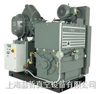 Stokes 1733 機械增壓泵組合 Stokes真空泵