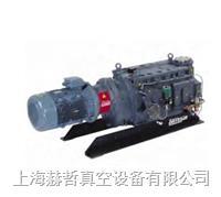 Edwards真空泵 工業干泵 GV600 爪式真空泵 愛德華工業干泵 干式真空泵