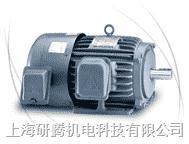 台湾TECO电机 AEEF,AEVF,AEEV,AEUV,ETEF,ETVF,EDVS,ETEFYG,EVVFYG