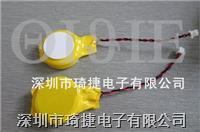 CR2477電池帶線帶插頭