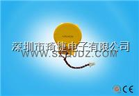 CR2450電池帶線