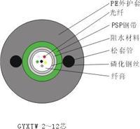 标准中心束管式轻铠光缆(GYXTW) GYXTW