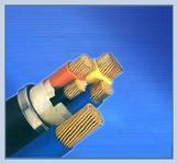 铠装聚氯乙烯电缆KVV22 铠装聚氯乙烯电缆KVV22