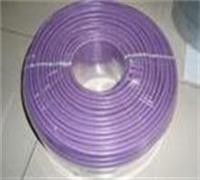 BPYJVPP2屏蔽变频电力电缆 BPYJVPP2屏蔽变频电力电缆