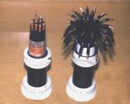 计算机电缆-zr djyvp2r 计算机电缆-zr djyvp2r