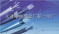 通讯电缆HJVVP-5×3×0.5 通讯电缆HJVVP-5×3×0.5