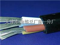 天联品牌电缆型号HYAT53 300X2X0.5 天联品牌电缆型号HYAT53 300X2X0.5
