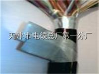 天联品牌电缆型号HYAT23;HYAT53通信电缆 天联品牌电缆型号HYAT23;HYAT53通信电缆
