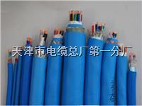 hpvv电缆 hpvv电缆