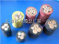 HYAT-100(2x0.5)/SC50-FC是什么意思 HYAT-100(2x0.5)/SC50-FC是什么意思