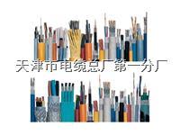 HYAT53 10*2*0.9 全塑通信电缆 铠装通信电缆 HYAT53 10*2*0.9 全塑通信电缆 铠装通信电缆