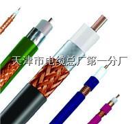 HYA音频色谱电缆 HYA音频色谱电缆