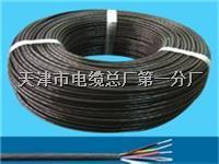 大对数电缆HYA-10 大对数电缆HYA-10