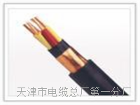 铠装屏蔽控制电缆KVVRP2 铠装屏蔽控制电缆KVVRP2
