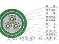 控制电缆KVVP2-22-10×1.5 控制电缆KVVP2-22-10×1.5