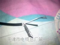 控制电缆KVVP2-22-37×1 控制电缆KVVP2-22-37×1
