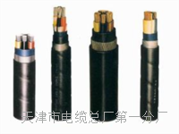 控制电缆KVVP22-8×2.5 控制电缆KVVP22-8×2.5