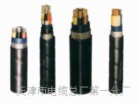控制电缆KVVP22-4×2.5 控制电缆KVVP22-4×2.5