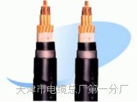 控制电缆KVVP22-19×1 控制电缆KVVP22-19×1