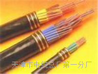 控制电缆KVV22-12×0.75 控制电缆KVV22-12×0.75