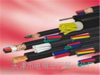 控制电缆KVV2×1 控制电缆KVV2×1