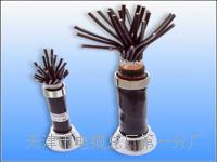 铁路信号电缆-PTYV、PTYY、PZYY型号 铁路信号电缆-PTYV、PTYY、PZYY型号