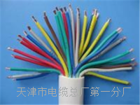 室外电话线ZR-HYA53-10x2x0.5重量 HYA53电话电缆线
